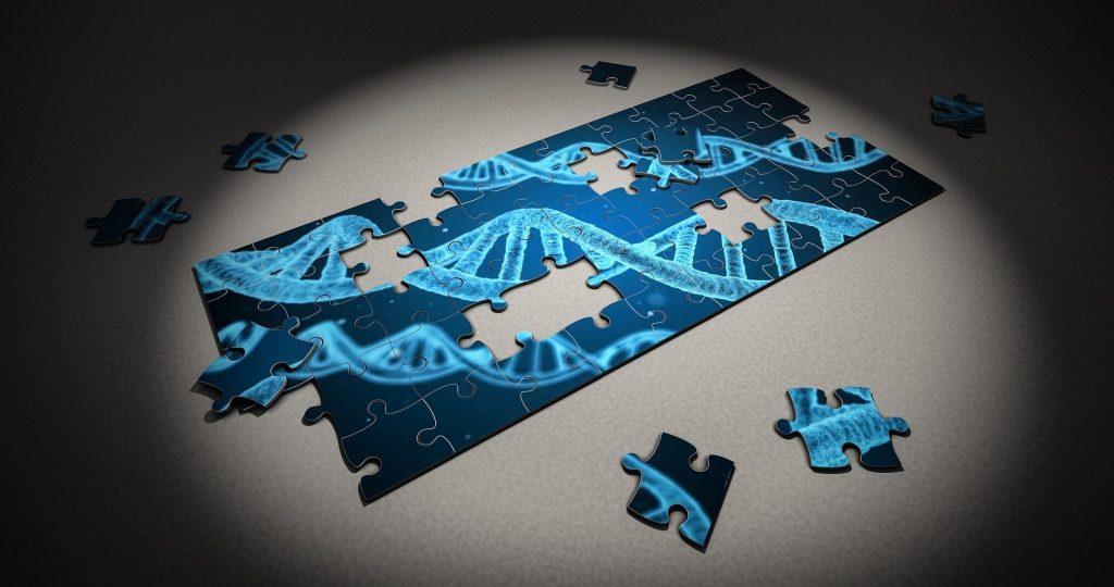 DNA_puzzle